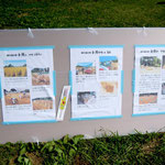 【水と景観を守る会】柳久保小麦の種まきから収穫まで[3~5]
