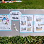 【水と景観を守る会】柳久保小麦の種まきから収穫まで[1~2]