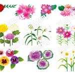 満タンWEB 花の素材