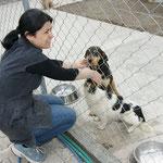 Frau Dogus / Freiwillige Helferin