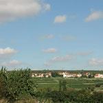 Panoramablick auf Mölsheim