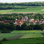 Panoramablickauf Wachenheim