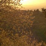 Coucher de soleil au dessus de Pistoia (poche de Florence) au mois d'avril