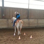 Training November 2013