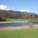Region Solothurn Wohnung kaufen, nähe Natur!