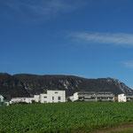 wohnungen langendorf - Ihre Nachbarschaft - das Quartier von Bellach aus gesehen