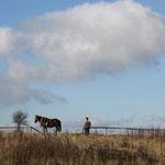 Mann Pferd m. Holzpflug, Karpathen, Ukraine