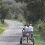 Verkehrsmittel, Landesinnere, Weg nach Tamera