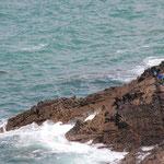 Angler auf Fels bei Ponte di Gruione