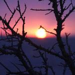 Sonnenuntergangsgeschenk