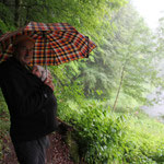 Regenspaziergang b. Riesenburg/fränk.Schweiz