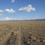 Fahrspur in der Wüste