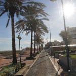 mit Unimog auf der Strandpromenade von Benicarlo
