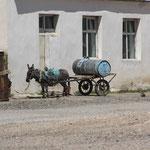 Esel m. Wasserwagen in Bayanling