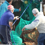 Fischerarbeit, Aguillas