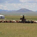 Landleben 5 km vor Avaikheer