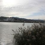 Embalse di Ebro bei Flix
