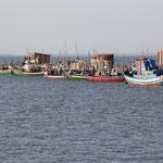 Hafen, Carrasqueira