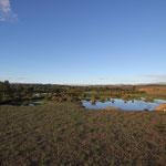 Morgenstimmung am Standplatz Naturschutzgebiet Devilin aral