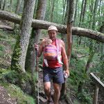 Weg zur Schlucht Suisse Normandi