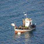 Fischerboot bei La Isletta