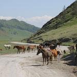 Auf dem Weg nach Tyungur