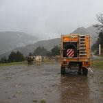 Standplatz Pal 2080 m, Regen und Kühe