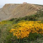 Küste, Cabo Espichel