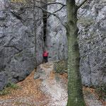 Martin am Fels in Schlucht Ziedelksyj, Slowakei