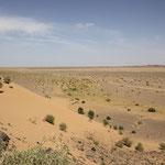 Abschied Wüste