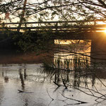 Sonnenaufgang am Staffelsee