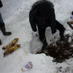 雪の中からの大根掘り。食べたら超甘かった!!