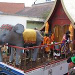 Brosome / Letzenberg-Tierpark - Besuch aus dem Königreich Siam