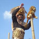FSG Malsch - König der Löwen