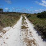 Sandpiste an der Westküste