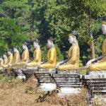 Buddhastatuen in Reih und Glied