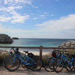 Rottnest Island by bike
