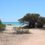 Strand von Hamelin