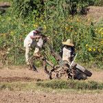 Feldarbeiter