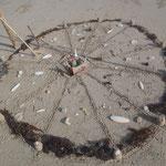 Aus unserem Muschelfund am Thung Wua Laen Beach