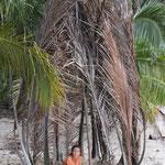 Palmhütte auf Koh Kood, Thailand