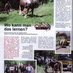 Starke Pferde Nr. 51, 3/09