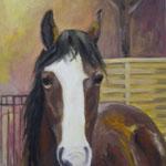 Pferdeportrait  2008;  Gouache auf Leinwand;  60x80 cm  Privatbesitz
