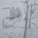 Straße mit Bäumen   2000;    Graphit auf Papier;  57x43 cm