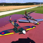 Spitfire und Mustang Dogi