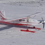 PC-6 Porter mit Ski