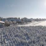 Silvester & Neujahr in Winterberg genießen
