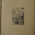 Laplace, paysage, bois, album Ziniar nov. 1920