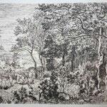 n°73 Lisière du bois, 1857.