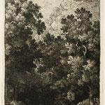 11  Chiens verts, cuivre 231 x 139, Illustration Nouv.  n°257